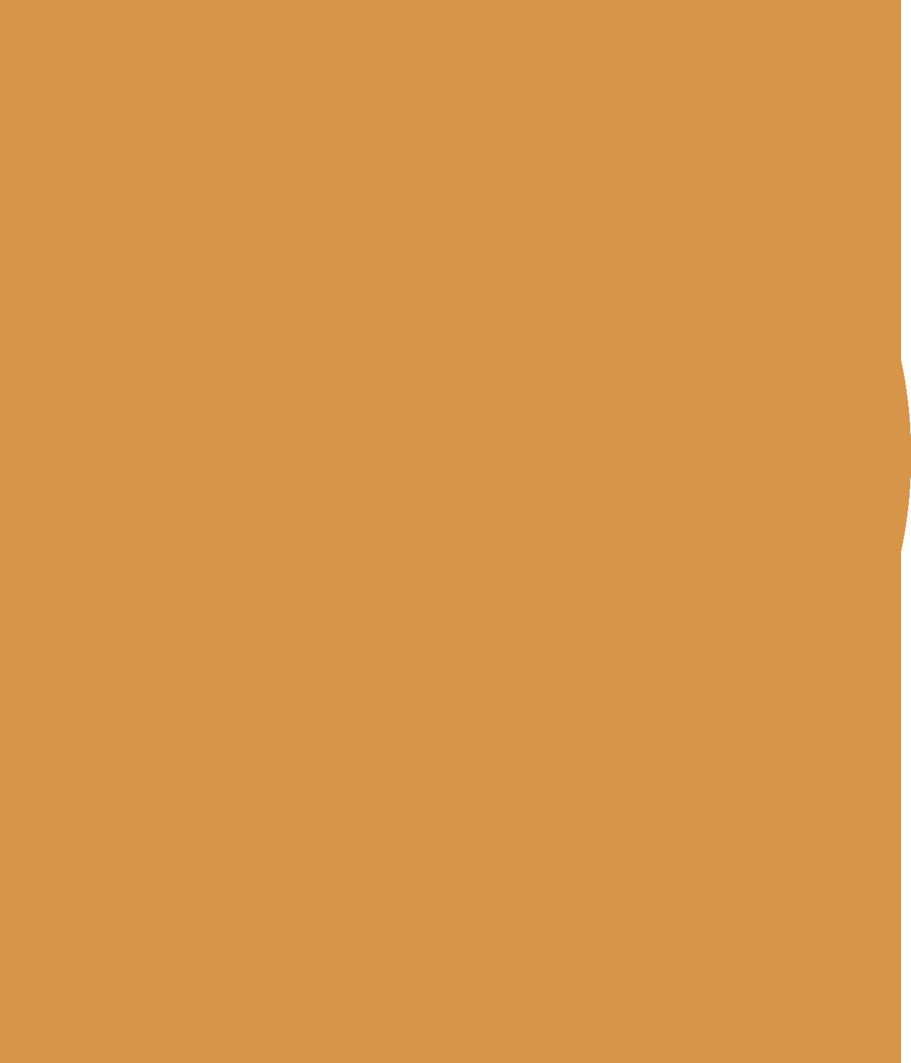 Icon Einkaufswagen weiss 01